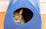 Домик для кошки из футболки и коробки своими руками