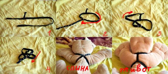 Инструкция - одеваем шлейку кошке