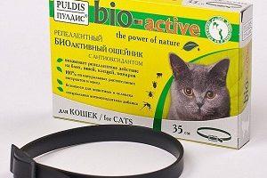 Ошейник от блох для кота