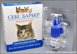 Капли для взрослого кота